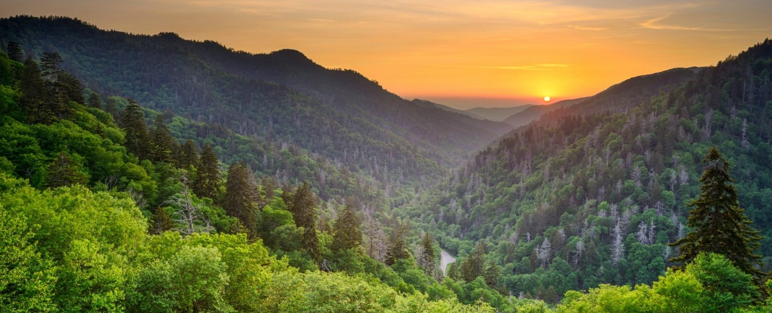 Beautiful views of that you can see on the Great Smoky Mountains Railroad.