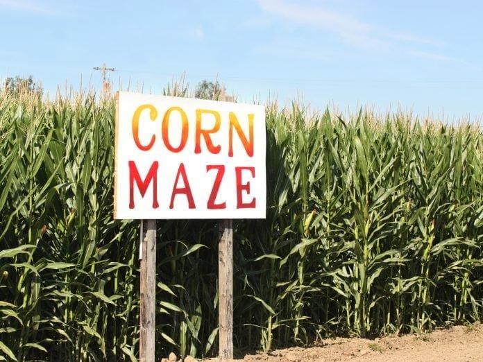 Corn Maze sign on the Eliada Corn Maze