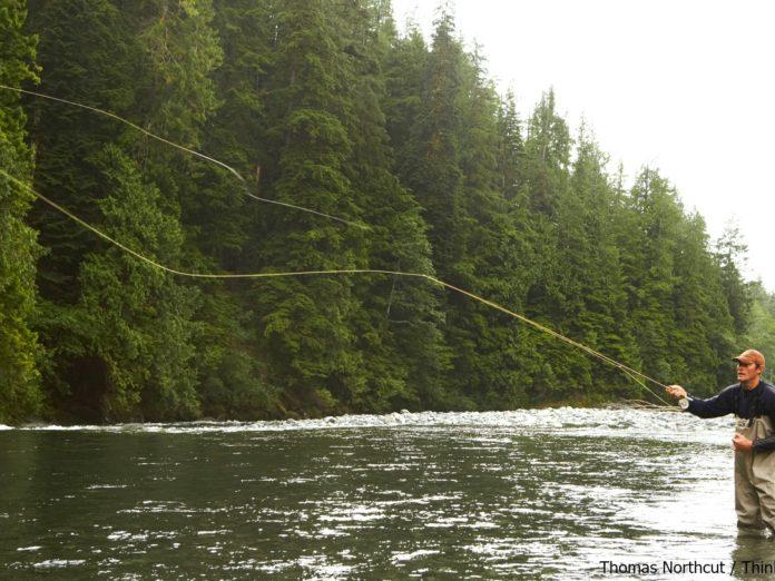Green River, NC, Fly Fishing