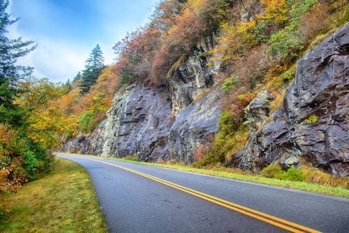 road with fall foliage lining it