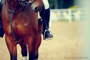 tryon horse shows