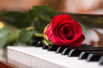 Rose on piano - GettyImages - credit: sergio_kumer