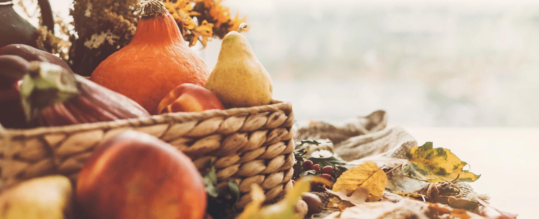 thanksgiving pumpkins leaves gourds