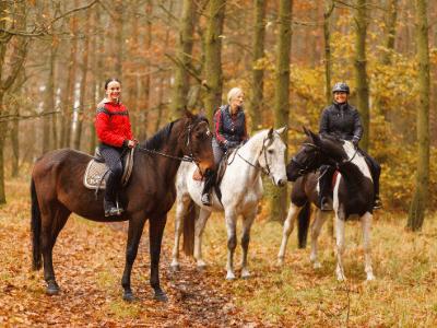 horseback riding in the fall fall foliage