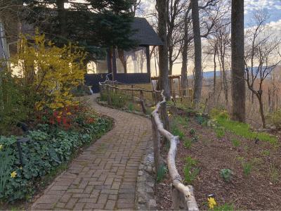 orchard inn views