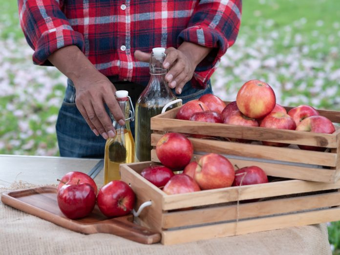 Hand of senior man with Apple fruit and Apple juice drink bottle in the garden. Harvested and manufactured products from Apple fruit Concept.